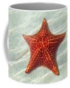 Starfish 3 Of Bottom Harbour Sound Coffee Mug