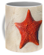 Starfish 4 Of Bottom Harbour Sound Coffee Mug