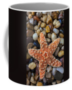 Starfish On Rocks Coffee Mug