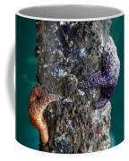 Starfish Under The Pier Coffee Mug