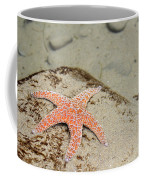 Starfish Underwater Coffee Mug