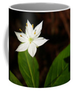 Starflower Coffee Mug by Christina Rollo