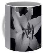 Stargazer Coffee Mug