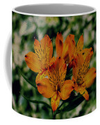 Stargazers Coffee Mug