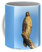 Stately Red-shouldered Hawk Coffee Mug