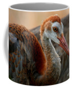 Staying Close To Mom Coffee Mug