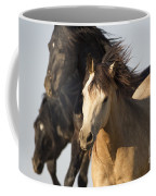 Stealing The Mare Coffee Mug