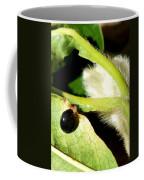 Steel Blue Ladybird Coffee Mug