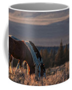 Steens Sundown Coffee Mug