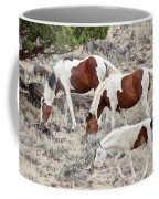Steens Wild Paints Coffee Mug
