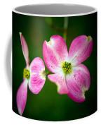 Steller Coffee Mug