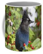 Steller's Jay And Red Berries Coffee Mug