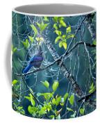 Steller's Jay In A Tree Coffee Mug