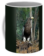 Stellers Sea Eagle Coffee Mug