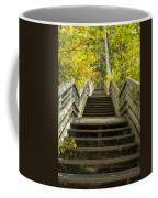 Step Trail In Woods 10 Coffee Mug