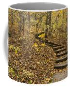 Step Trail In Woods 16 Coffee Mug