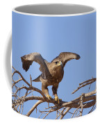 Steppe Eagle Aquila Nipalensis 1 Coffee Mug