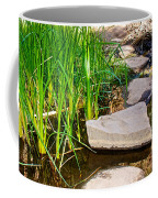 Stepping Stones Across Creek On Lower Palm Canyon Trail In Indian Canyons Near Palm Springs-ca Coffee Mug
