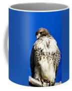 Stern Coffee Mug