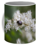 Stiff Dogwood Wildflowers And Beetle Coffee Mug