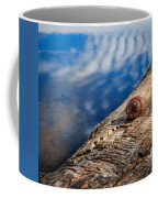 Still Coffee Mug