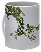 Still Water Reflection Coffee Mug