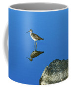 Still Water  Coffee Mug