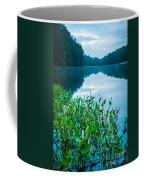 Stillness On Schreeder Pond Coffee Mug
