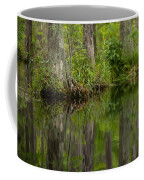 Stillness Swamp Coffee Mug
