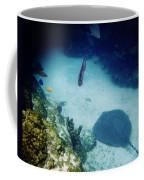 Stingray On The Bottom Coffee Mug