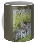 Stoic Sandhill Coffee Mug