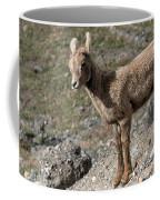 Stone Lamb Coffee Mug