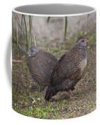 Stone Partridges Coffee Mug