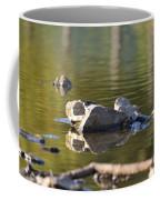 Stone Reflections Coffee Mug