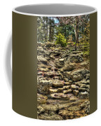Stone Spring At Woodward Park 1 Coffee Mug