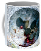 Stones And Fall Leaves Under Water-43 Coffee Mug