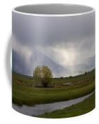 Storm Break Coffee Mug