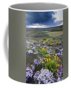 Storm Over Wildflowers Coffee Mug