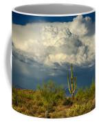 Stormy Desert Skies  Coffee Mug