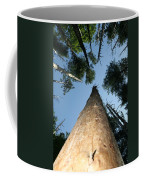Straight And Narrow Coffee Mug