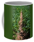 Strawberry Farm Field Coffee Mug
