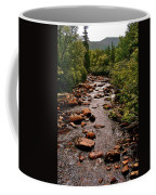 Stream Along Gros Morne Trail In Gros Morne Np-nl Coffee Mug