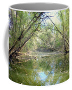Stream Of Water Coffee Mug
