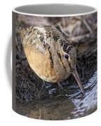 Streamside Woodcock Coffee Mug