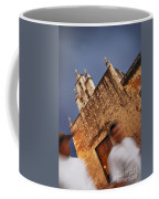 Streets Of Merida Coffee Mug