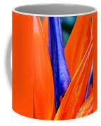 Strelitzia Colour Coffee Mug