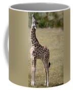 Stretch Coffee Mug