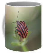 Striped Bug Coffee Mug