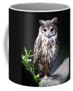Striped Owl Coffee Mug