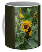 Striped Sunflower Coffee Mug